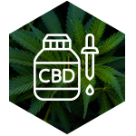 CBD tincture vector image