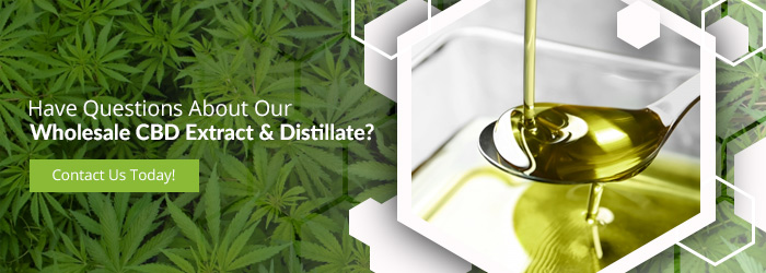 """Have questions about our wholesale CBD Extract & distillate?"" button"